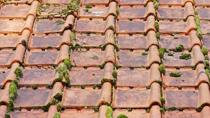Decapage de toiture